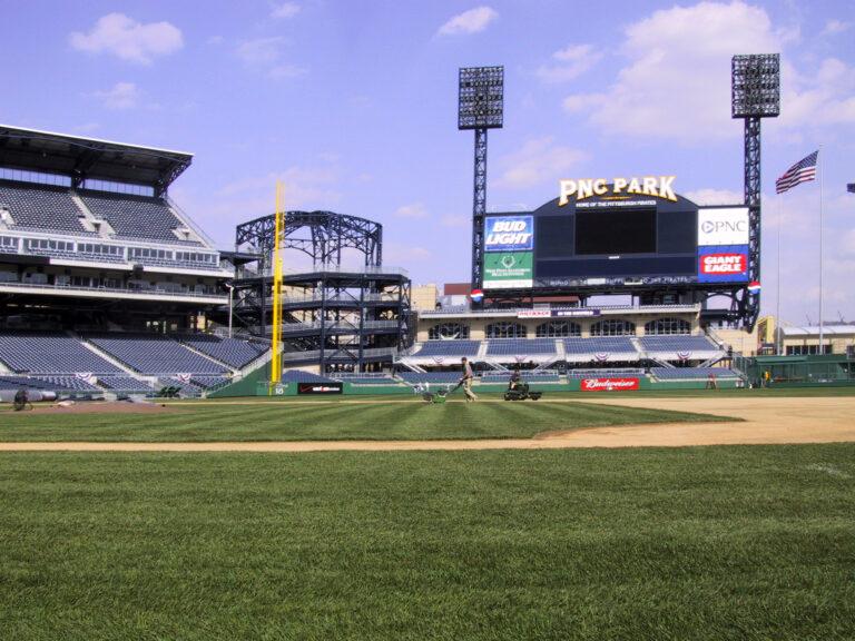 Field-view1-1-1.jpg